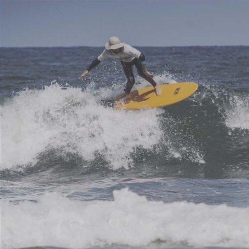 curso de surf online